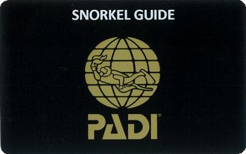 PADIスノーケルガイドコース