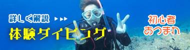 石垣島の体験ダイビングを徹底解説