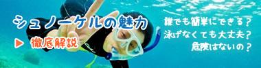 石垣島のシュノーケルを徹底解説