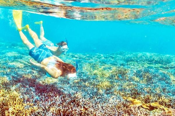世界に誇れる石垣島の海