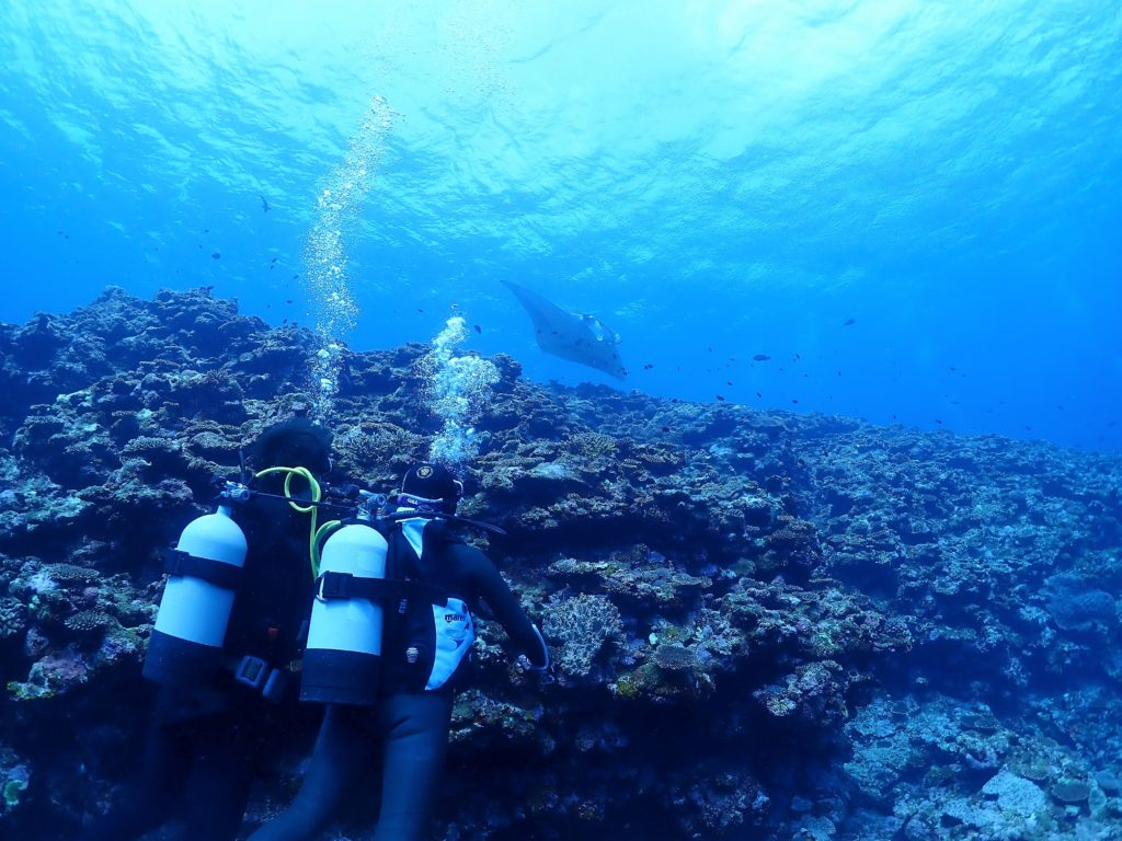 石垣島体験ダイビング・シュノーケル・幻の島上陸ツアー開催【石垣島ダイビングスクールあつまる】